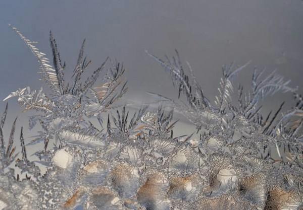 Eiskristalle_an_Gras